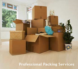 packing-services1